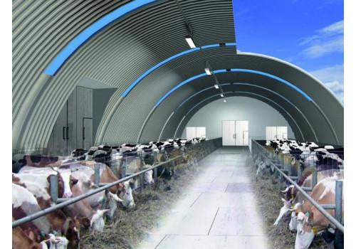 Как организовать мини-ферму и заработать на продаже молока