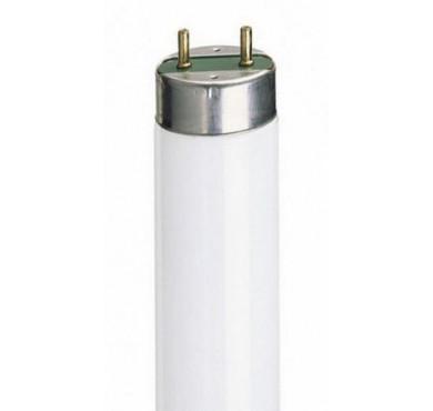 Лампа люминесцентная FH 14W/865 HE G5 OSRAM 4050300464848